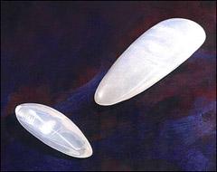 Голени - силиконовые протезы икроножных мышц